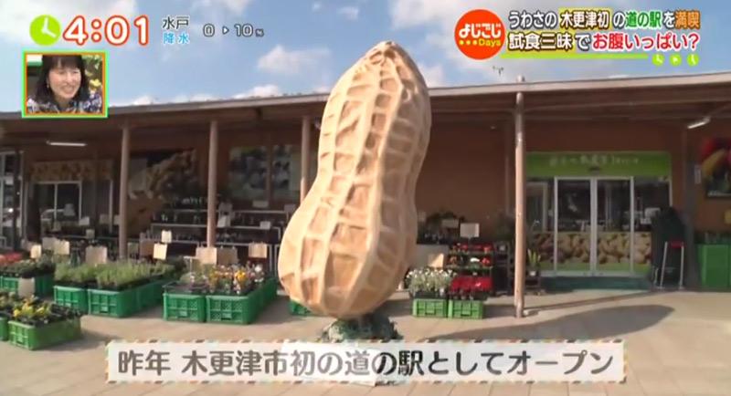 TBS テレビ東京 よじごじDays width=