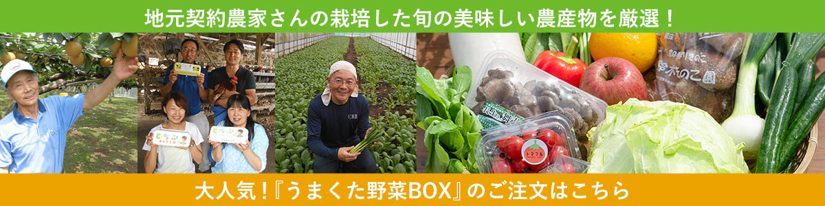 うまくたの里野菜BOX 通販ご予約はこちら